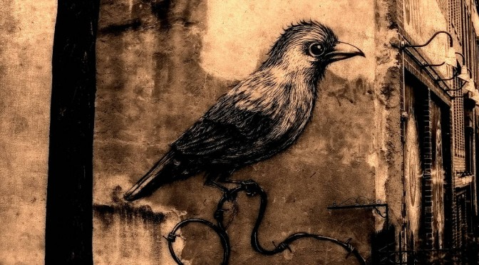 Display your tweets on your blog using Kebo Twitter Feed